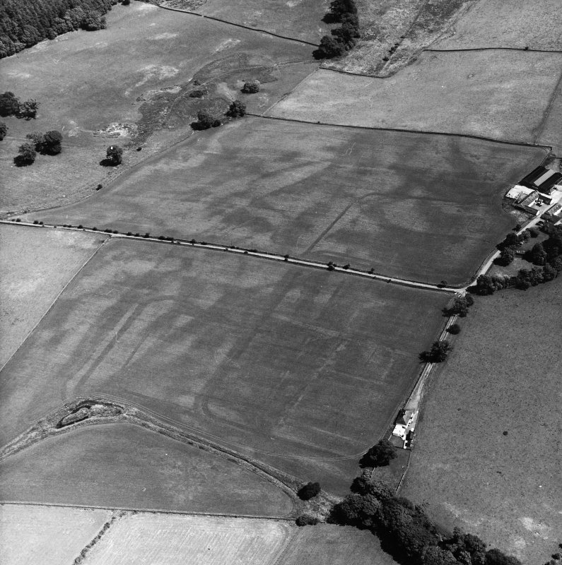 Bankhead, Dalswinton, oblique aerial view, taken from the WNW, centred on the cropmarks of Roman Forts and showing an oval enclosure in the centre right of the photograph..