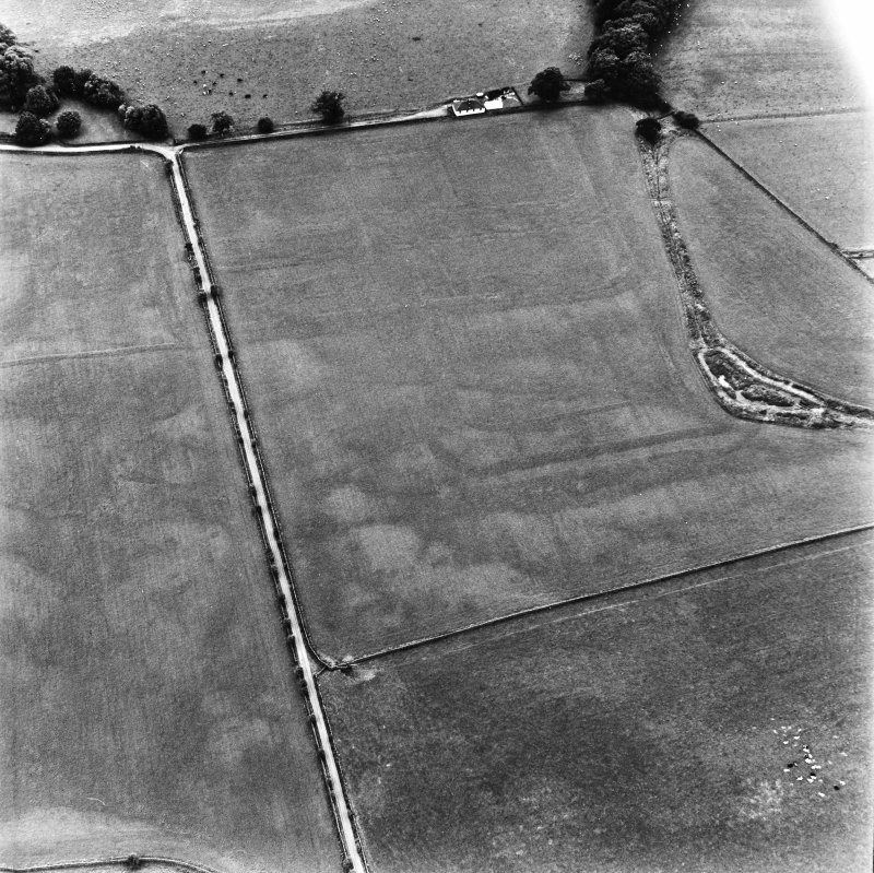 Bankhead, Dalswinton, oblique aerial view, taken from the NE, centred on the cropmarks of Roman Forts.