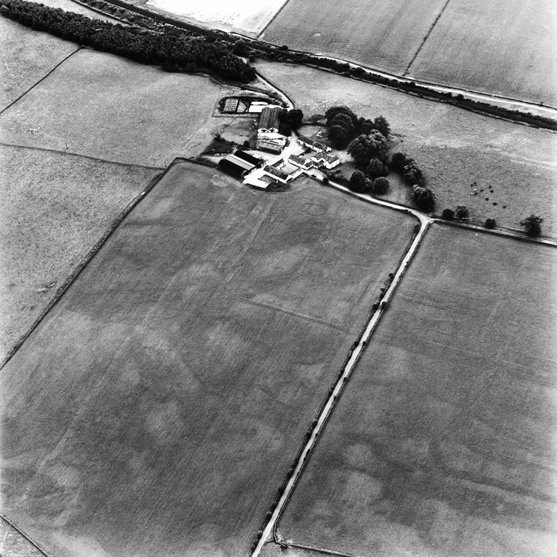 Bankhead, Dalswinton, oblique aerial view, taken from the NNE, centred on the cropmarks of Roman Forts and an oval enclosure.