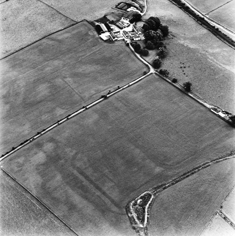 Bankhead, Dalswinton, oblique aerial view, taken from the N, centred on the cropmarks of Roman Forts and an oval enclosure.
