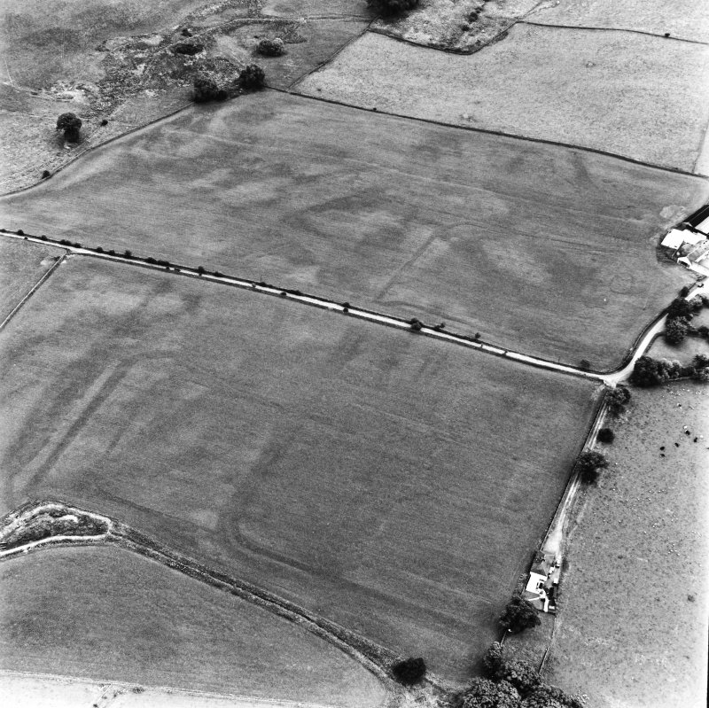 Bankhead, Dalswinton, oblique aerial view, taken from the NW, centred on the cropmarks of Roman Forts and an oval enclosure.