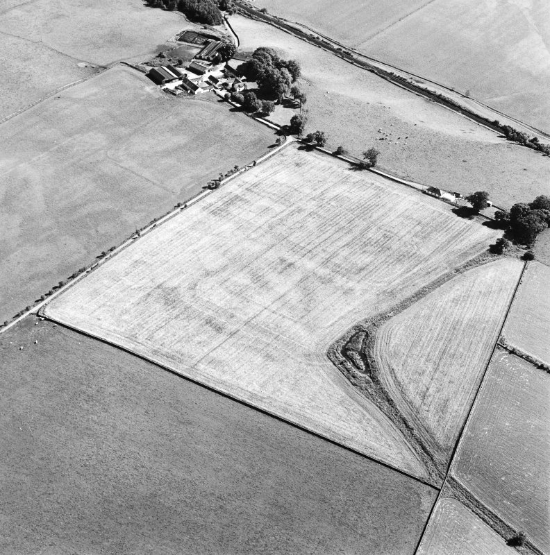 Oblique aerial view of Dalswinton, Bankhead, taken from the N, centred on the cropmarks of Roman forts.  An enclosure, situated to the SE of the forts, is visible in the top left-hand side of the photograph.