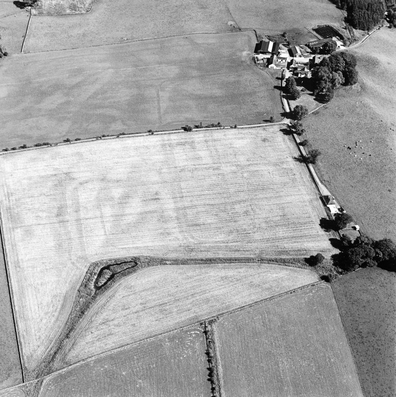 Oblique aerial view of Dalswinton, Bankhead, taken from the NW, centred on the cropmarks of Roman forts.  An enclosure, situated to the SE of the forts, is visible in the top right-hand side of the photograph.