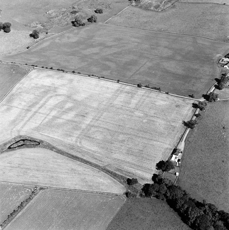 Oblique aerial view of Dalswinton, Bankhead, taken from the W, centred on the cropmarks of Roman forts.  An enclosure, situated to the SE of the forts, is visible in the centre right of the photograph.