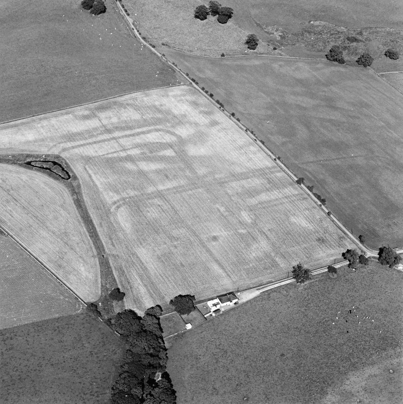 Oblique aerial view of Dalswinton, Bankhead, taken from the SW, centred on the cropmarks of Roman forts.