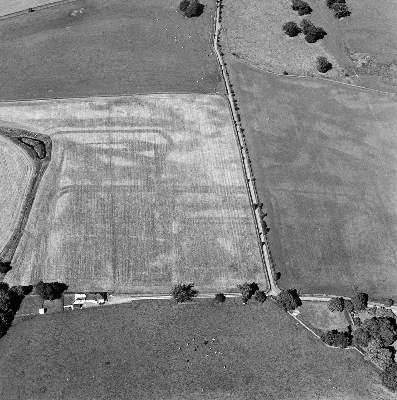 Oblique aerial view of Dalswinton, Bankhead, taken from the SSW, centred on the cropmarks of Roman forts.  An enclosure, situated to the SE of the forts, is visible in the bottom left-hand side of the photograph.