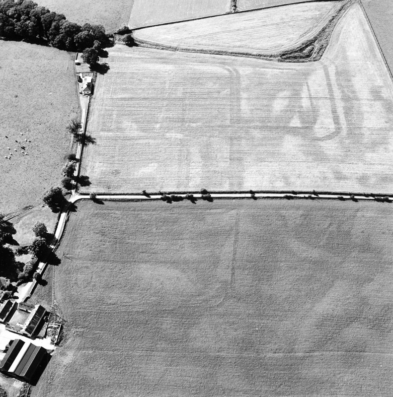 Oblique aerial view of Dalswinton, Bankhead, taken from the SE, centred on the cropmarks of Roman forts.  An enclosure, situated to the SE of the forts, is visible in the bottom right-hand side of the photograph.