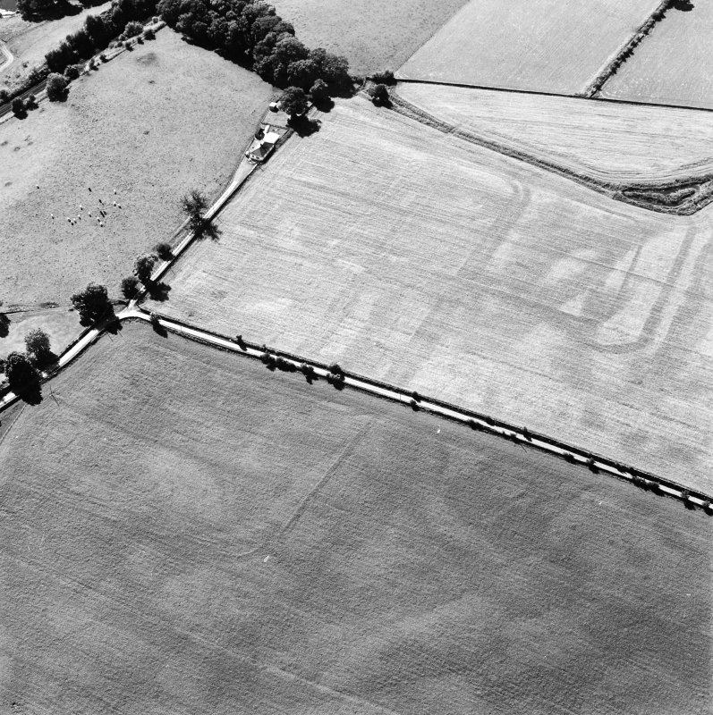 Oblique aerial view of Dalswinton, Bankhead, taken from the ESE, centred on the cropmarks of Roman forts.  An enclosure, situated to the SE of the forts, is visible in the centre left of the photograph.