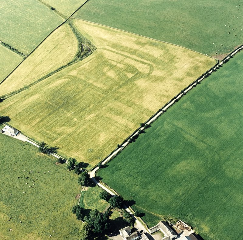 Oblique aerial view of Dalswinton, Bankhead, taken from the SSE, centred on the cropmarks of Roman forts.  An enclosure, situated to the SE, is visible in the bottom right-hand side of the photograph.