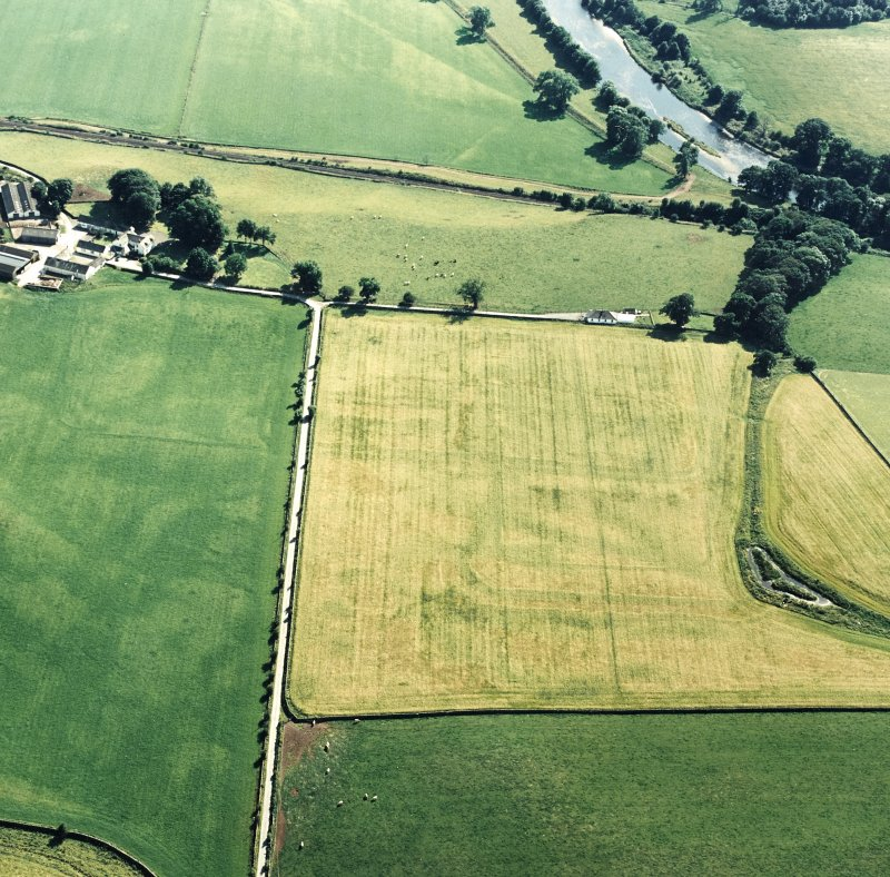 Oblique aerial view of Dalswinton, Bankhead, taken from the NE, centred on the cropmarks of Roman forts.  An enclosure, situated to the SE, is visible in the centre left of the photograph.  A linear cropmark, situated to the SW of the forts, is visible inthe top centre of the photograph.