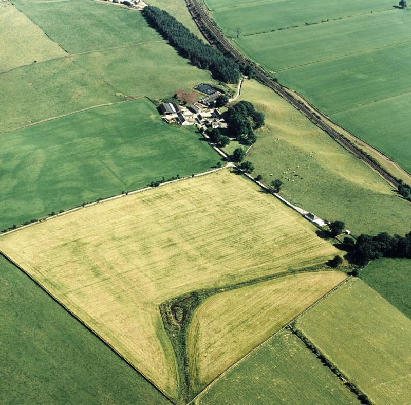Oblique aerial view of Dalswinton, Bankhead, taken from the NNW, centred on the cropmarks of Roman forts.  An enclosure, situated to the SE, is visible in the centre of the photograph.