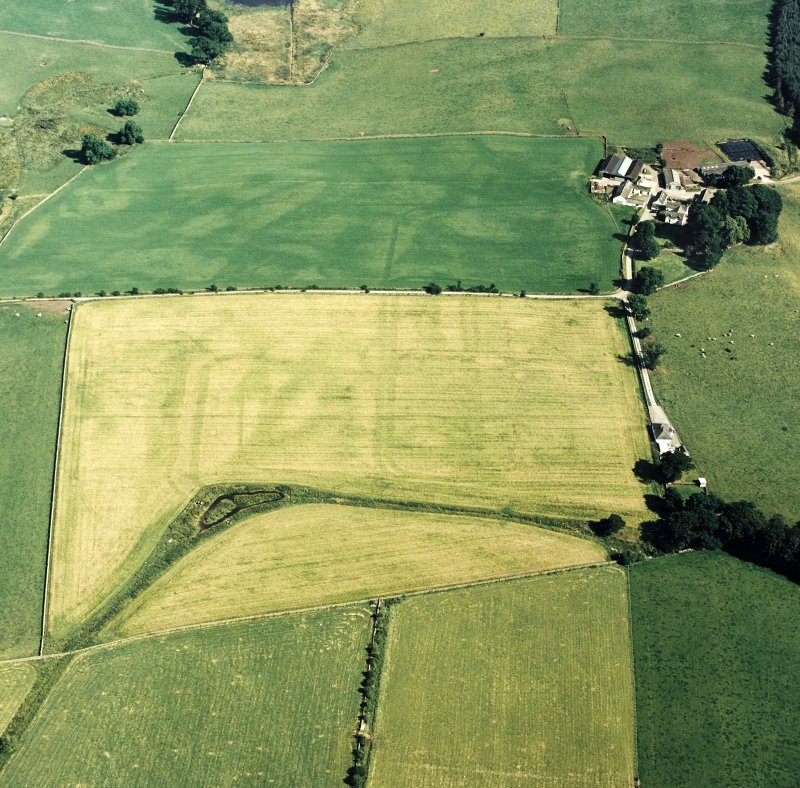 Oblique aerial view of Dalswinton, Bankhead, taken from the NW, centred on the cropmarks of Roman forts.  An enclosure, situated to the SE, is visible in the top right-hand side of the photograph.