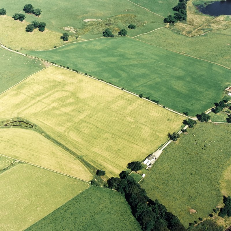 Oblique aerial view of Dalswinton, Bankhead, taken from the W, centred on the cropmarks of Roman forts.  An enclosure, situated to the SE, is visible in the centre right of the photograph.