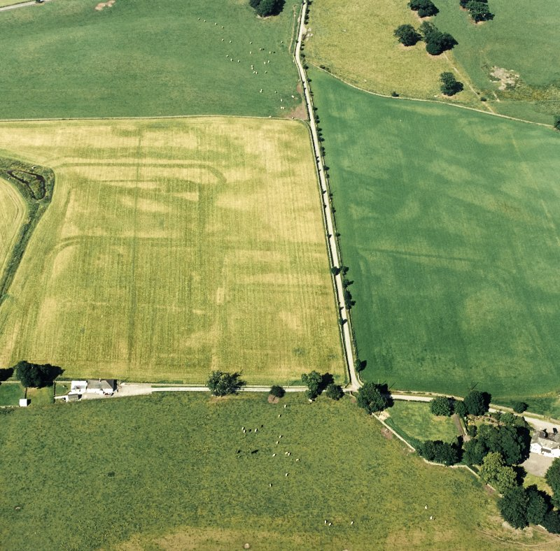 Oblique aerial view of Dalswinton, Bankhead, taken from the SW, centred on the cropmarks of Roman forts.  An enclosure, situated to the SE, is visible in the bottom right-hand side of the photograph.