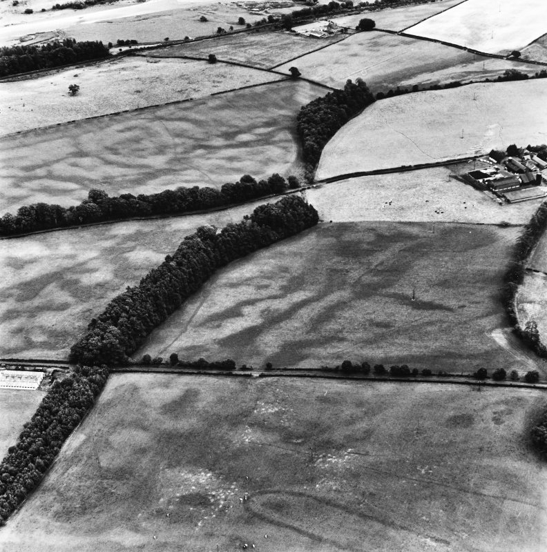 Holywood, oblique aerial view, taken from the ENE, centred on the cropmarks of a cursus monument and linear cropmarks.