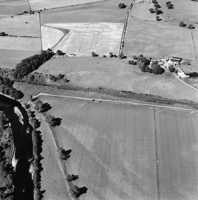 Oblique aerial view of Dalswinton, Bankhead, taken from the SW, centred on a linear cropmark.  The cropmarks of Roman forts, situated to the NE, are seen in the top centre of the photograph.