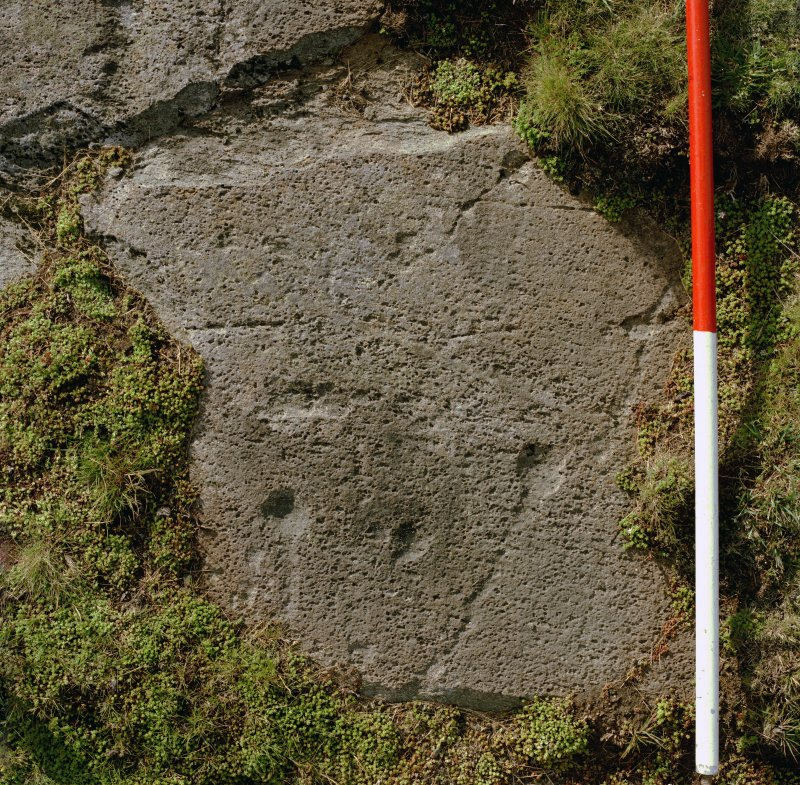 Cup and ring markings, Cairnbaan 1