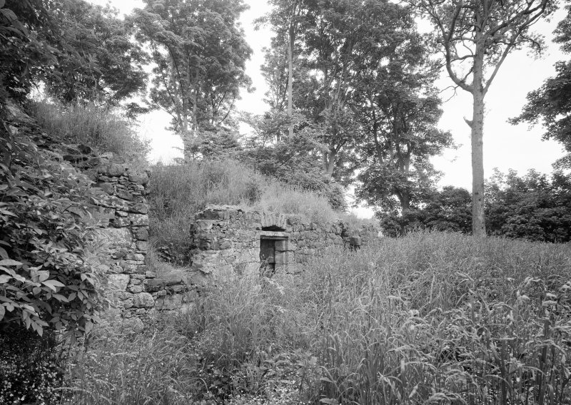View of remains of Crosbie House adapted to icehouse, Fullarton House, from south.
