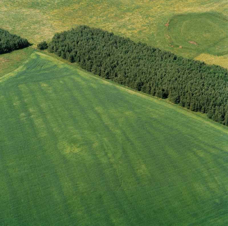 Oblique aerial of Weston henge.