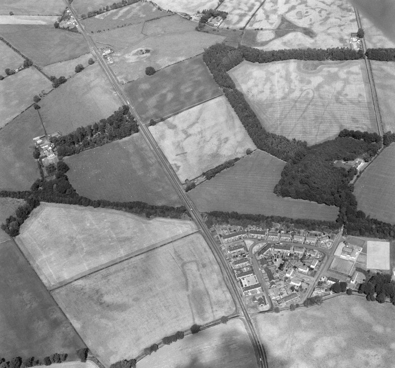 Oblique aerial view of the cursus at Holywood from south east.