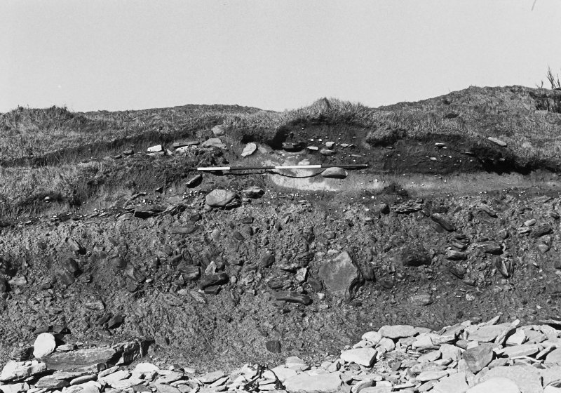 Photographic survey of cliff section: Cutting 5 before excavation.
