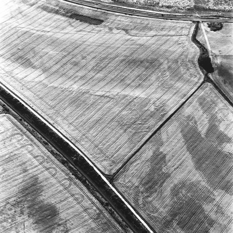 Blackhill, oblique aerial view, taken from the ESE, centred on the cropmarks of a palisaded enclosure and a possible round house.