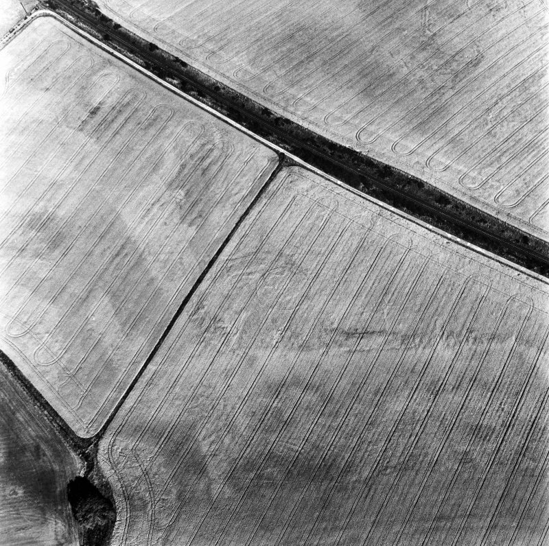 Blackhill, oblique aerial view, taken from the WNW, centred on the cropmarks of a palisaded enclosure and a possible round house.