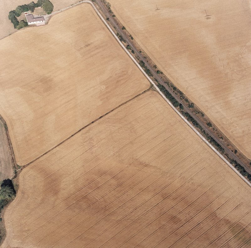 Blackhill, oblique aerial view, taken from the W, centred on the cropmarks of a palisaded enclosure and a possible round house.