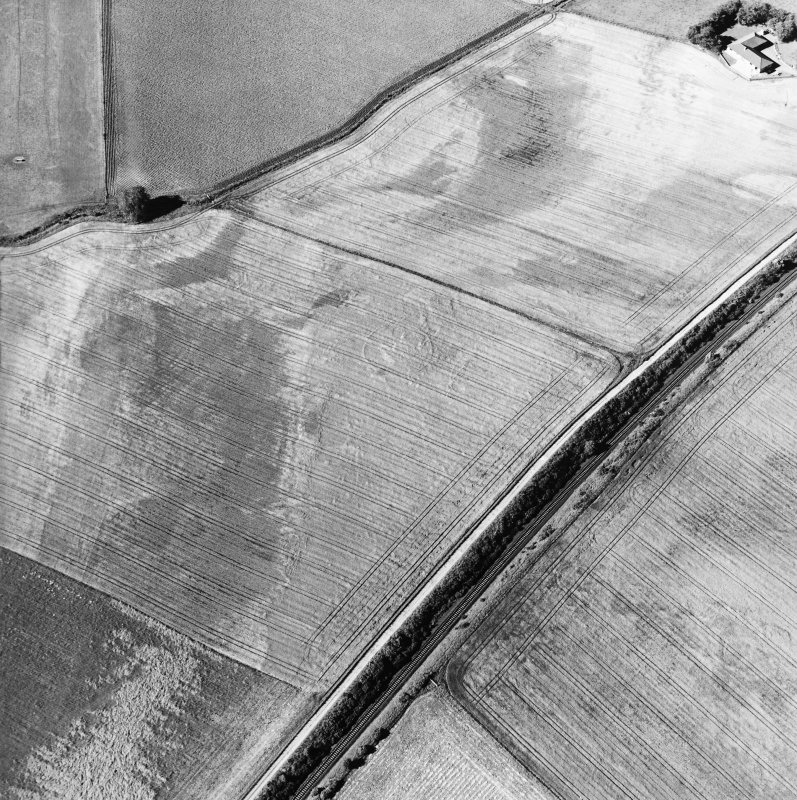 Blackhill, oblique aerial view, taken from the S, centred on the cropmark of three palisaded enclosures.