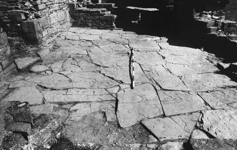 Excavation photograph : west range - room 3, paved floor, from north.