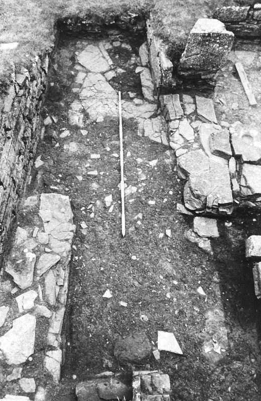 Excavation photograph : east range - room 2 fireplace after topsoil removed, from east.