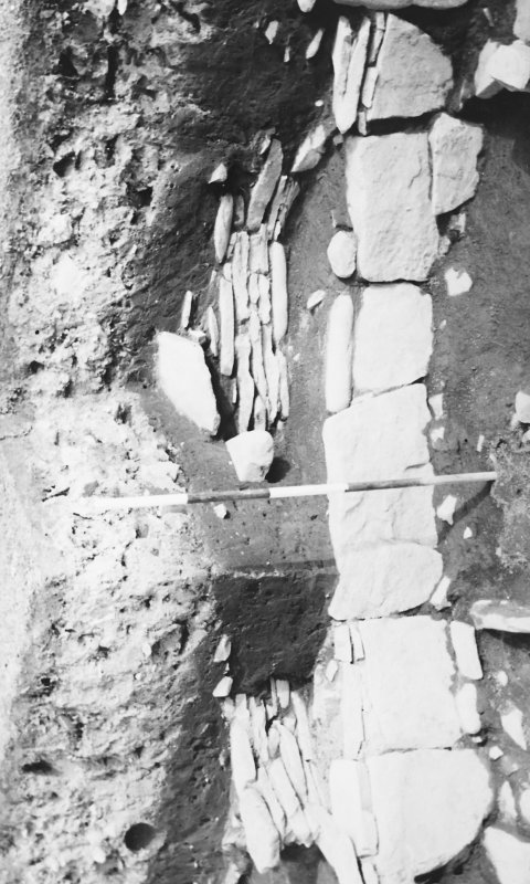 Excavation photograph: Wheel house out buildings; circular byre.