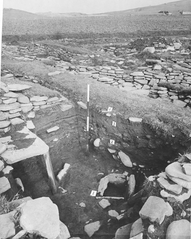 Publication Photograph: Viking Middens.