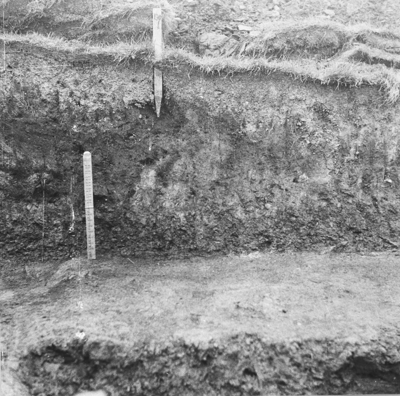 Excavation photograph: Section.