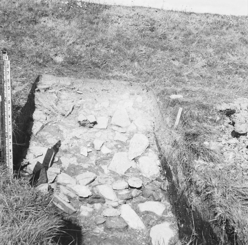 Excavation photograph: Ditch and bank.