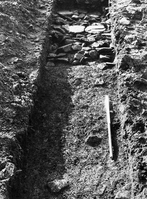 View of trench. October 1979.