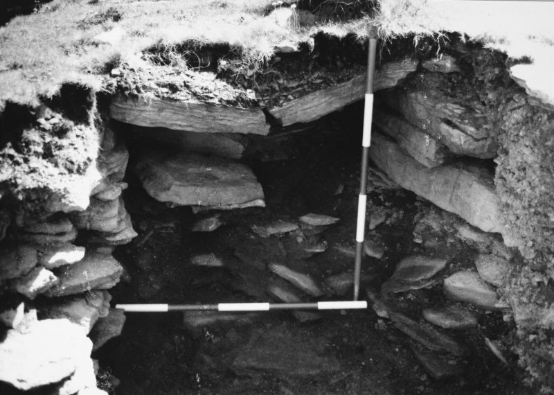 Excavation photograph