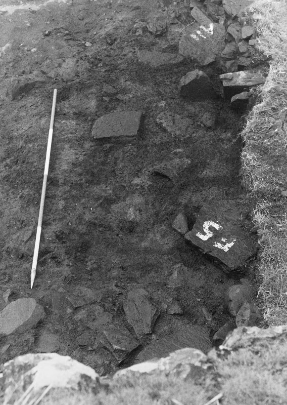 Trench 1,area A,layer 7, turves from south