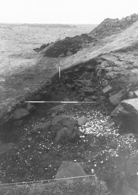 Trench 1, Area A, Extension. Feature 2,  Midden.  From West.