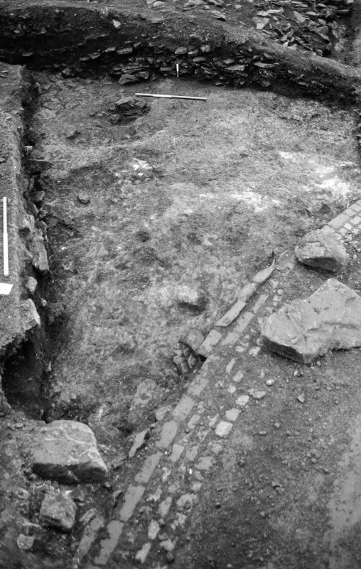 Excavation photograph : south portion after bank removed.
