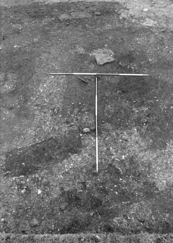 Excavation photograph : trench 1, stone setting f125 and adjacent modern garden features, from W.