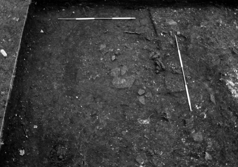 Excavation photograph : trench 5 - after removal of topsoil, from N.