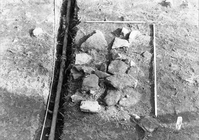 Excavation photograph : trench 5, close up of fill f195 of cut f162 from W.
