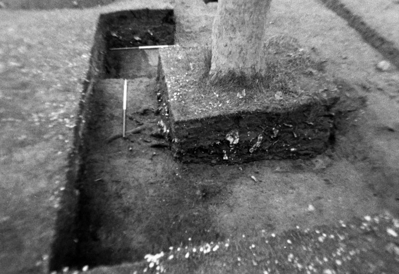 Excavation photograph : trench 5 , whole of f164, from W.