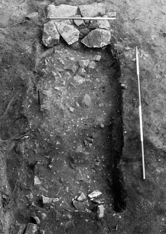 Excavation photograph : trench 5 - robber trench f161 and wall foundations f299, from S.