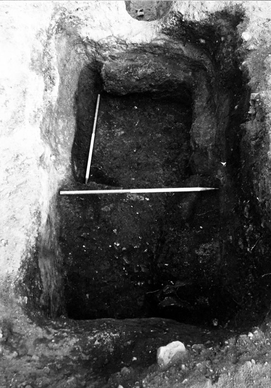 Excavation photograph : pit f166 showing clay lining f275 and slippage.
