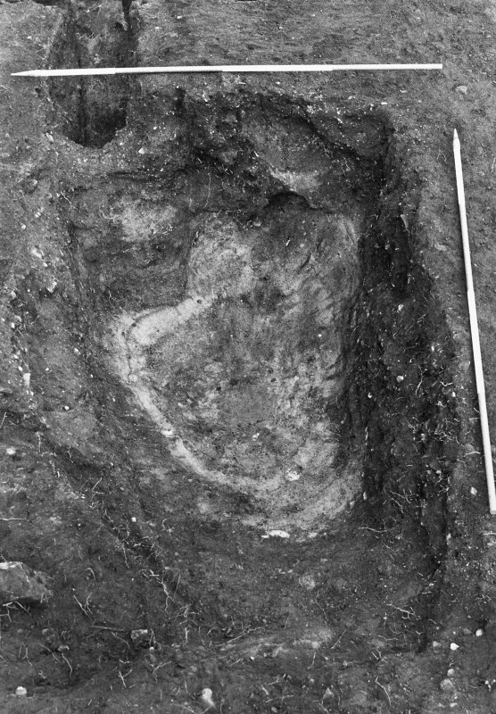 Excavation photograph : pit f301 fully excavated, from S.