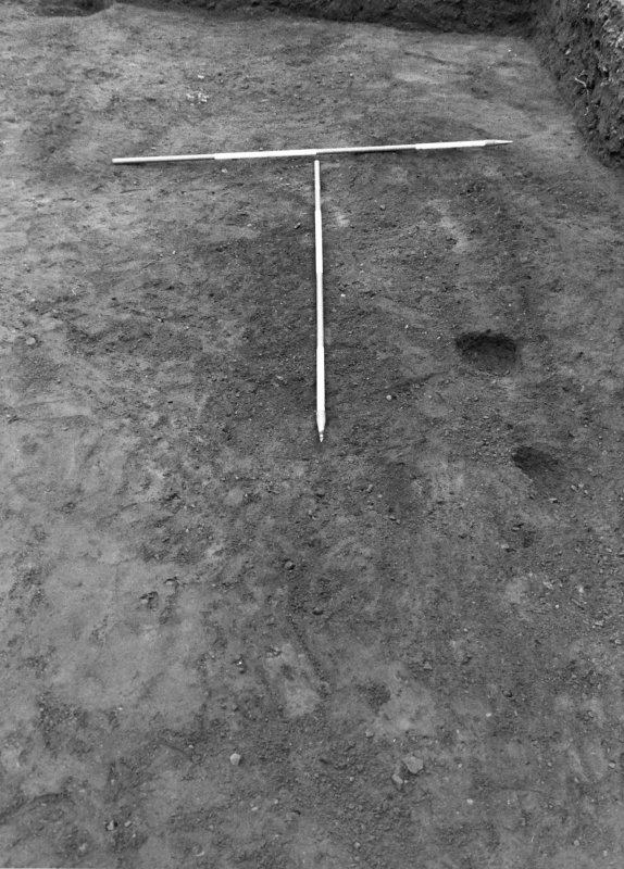Excavation photograph : feature f702, from W.