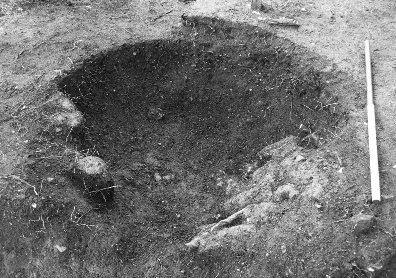 Excavation photograph : clay lining in pit f957, from N.