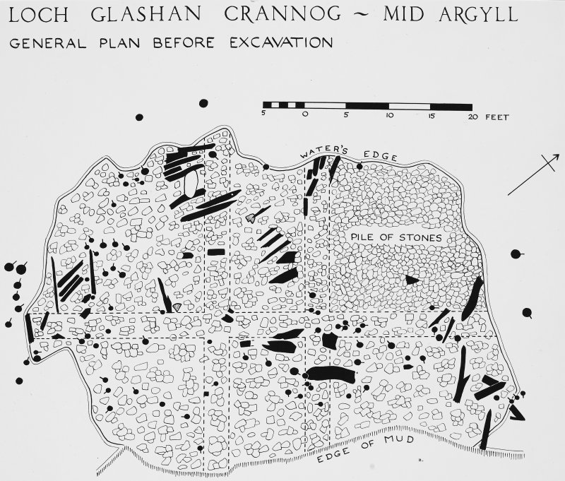 Illustration print : general plan of crannog before excavation.